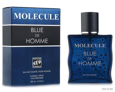 "Туалетная вода для мужчин ""Molecule Blue de Homme"" (100 мл) — фото, картинка"