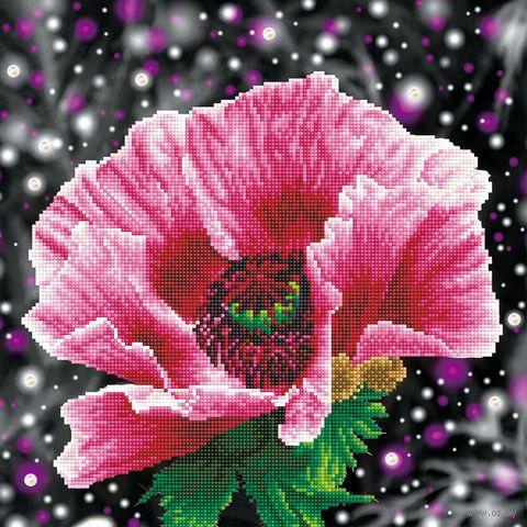 "Алмазная вышивка-мозаика ""Мак"" (420х420 мм) — фото, картинка"