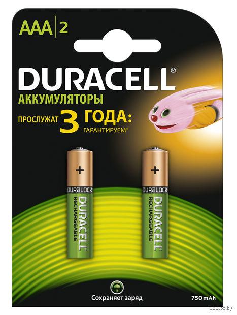 Аккумуляторы DURACELL никель-металлгидридные AAA HR6 750mAh (2 штуки)