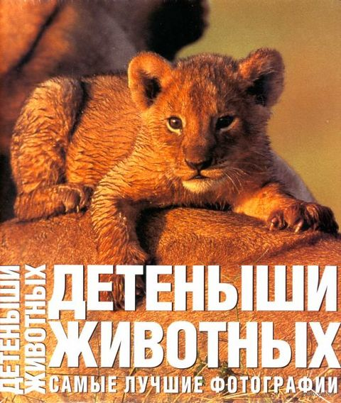 Детеныши животных. Самые лучшие фотографии. Анджела Ильдос