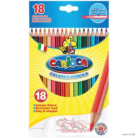 """Набор карандашей цветных """"Carioca"""" (18 цветов) — фото, картинка"""