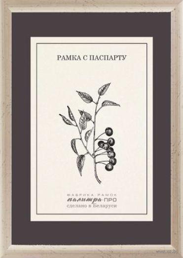 Рамка деревянная с паспарту (15х21 см, арт. П530-02/2026)