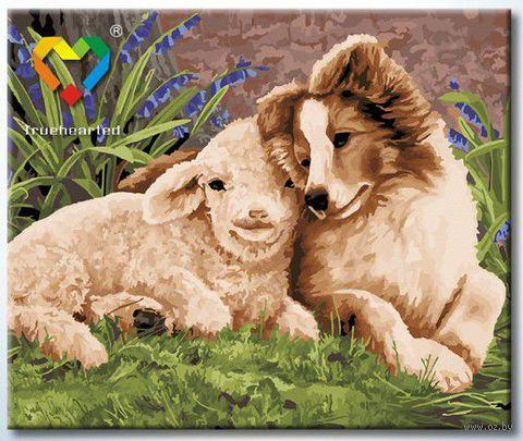 """Картина по номерам """"Лучшие друзья"""" (500x600 мм; арт. HB5060013) — фото, картинка"""