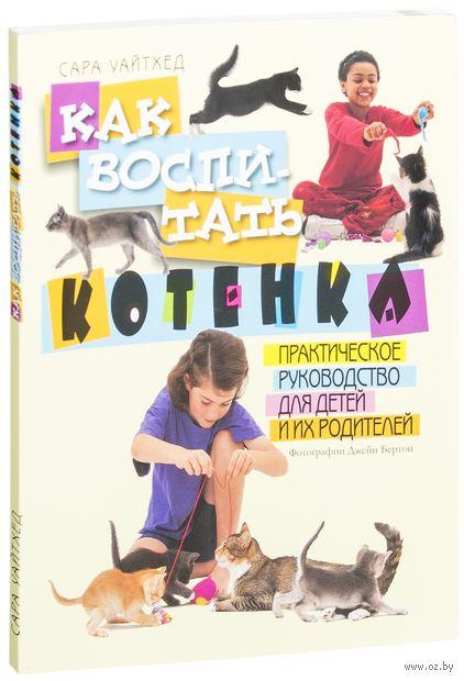 Как воспитать котенка. Практическое руководство для детей и их родителей. Сара Уайтхед
