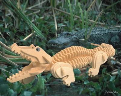 """Сборная деревянная модель """"Крокодил"""" — фото, картинка"""