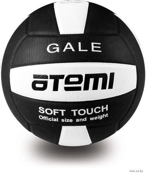 """Мяч волейбольный Atemi """"Gale"""" №5 (чёрно-белый) — фото, картинка"""