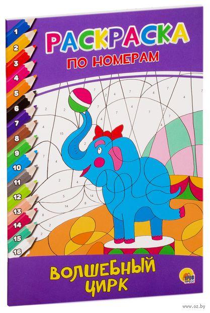 Волшебный цирк. Раскраска по номерам — фото, картинка