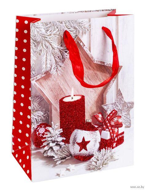 "Пакет бумажный подарочный ""Новогодний"" (18х24х8 см; арт. ABB300090) — фото, картинка"
