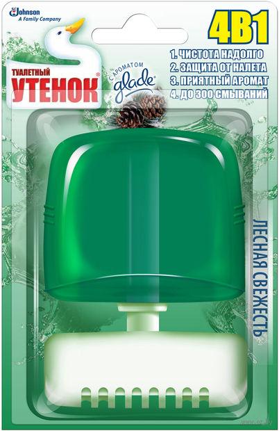 """Подвесной очиститель унитаза Туалетный Утенок """"Лесная свежесть"""" (55 мл)"""
