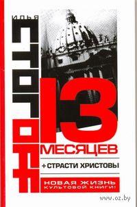 13 месяцев (м). Илья Стогов