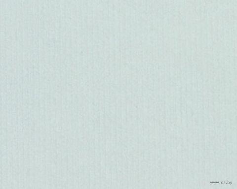 Паспарту (13x18 см; арт. ПУ2495) — фото, картинка