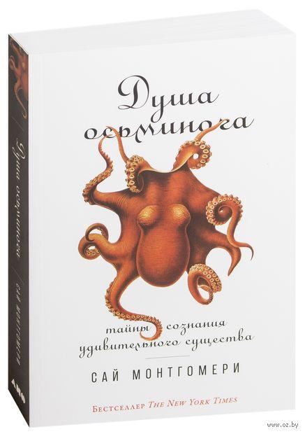 Душа осьминога. Тайны сознания удивительного существа — фото, картинка
