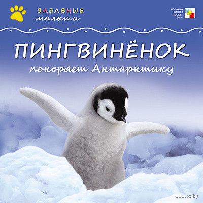 Пингвиненок покоряет Антарктиду. Майкл Тейтелбаум