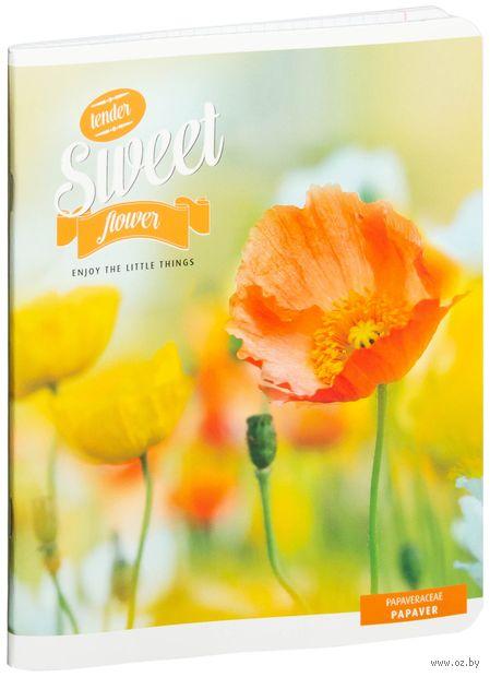 """Тетрадь в клетку 48 листов """"Цветы. Sweet Flower"""""""