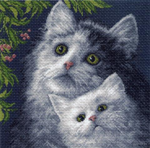 "Канва с нанесенным рисунком ""Котята"""