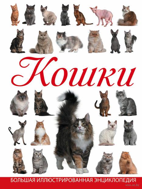 Кошки. Дмитрий Смирнов