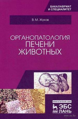 Органопатология печени животных — фото, картинка