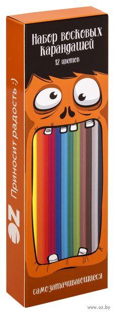 Набор карандашей цветных OZ (12 шт.) — фото, картинка