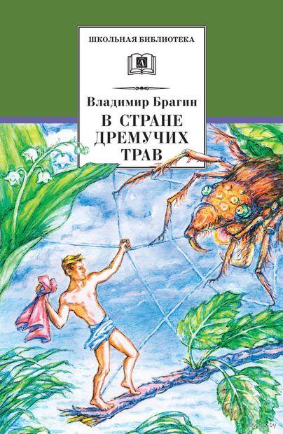 В Стране Дремучих Трав. Владимир Брагин