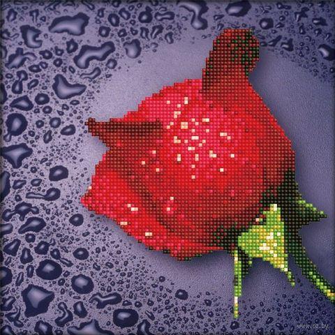 "Алмазная вышивка-мозаика ""Красная роза"" (250х250 мм) — фото, картинка"