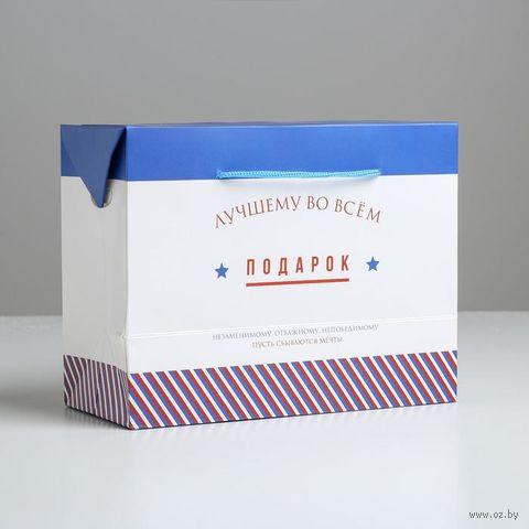 """Пакет бумажный подарочный """"Лучшему во всем"""" (23х18х11 см) — фото, картинка"""