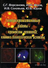 Гетерохроматиновые районы хромосом человека. Клинико-биологические аспекты. Светлана Ворсанова, Иван Юров, И. Соловьев