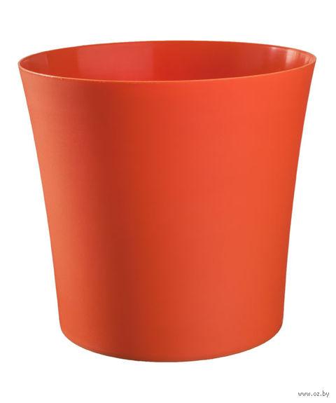 """Цветочный горшок """"Фиолек"""" (12,5 см; оранжевый) — фото, картинка"""