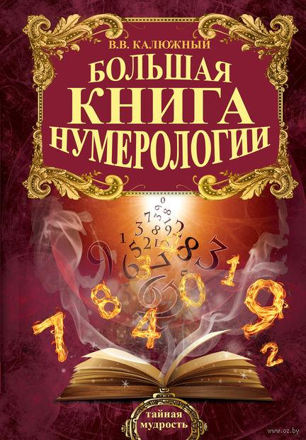 Большая книга нумерологии. Виктор Калюжный