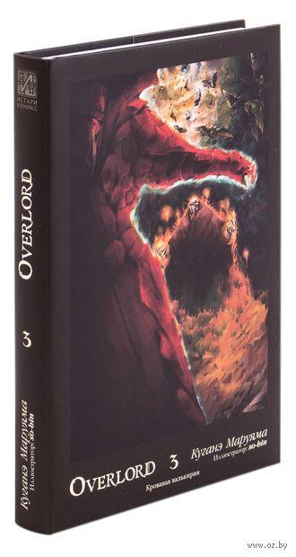 Overlord. Том 3 — фото, картинка