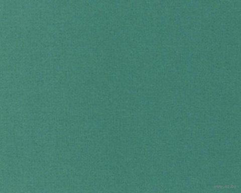 Паспарту (13x18 см; арт. ПУ2767) — фото, картинка