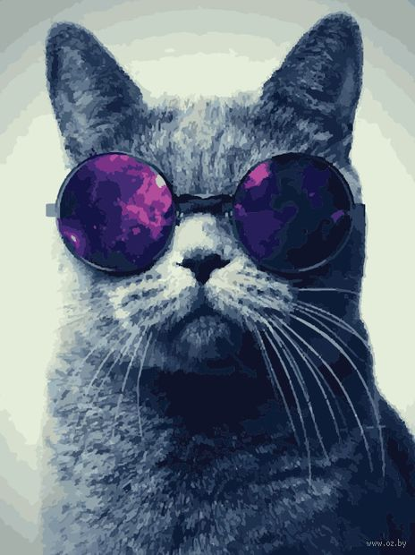 "Картина по номерам ""Кот в очках"" (400х500 мм) — фото, картинка"
