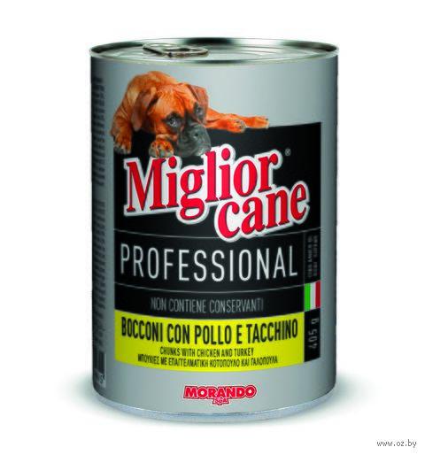 """Консервы для собак """"Cane"""" (405 г; c курицей и индейкой) — фото, картинка"""