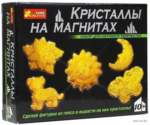 """Набор для выращивания кристаллов """"Кристаллы на магнитах"""" (желтые)"""