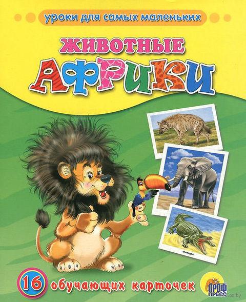 Животные Африки. 16 обучающих карточек
