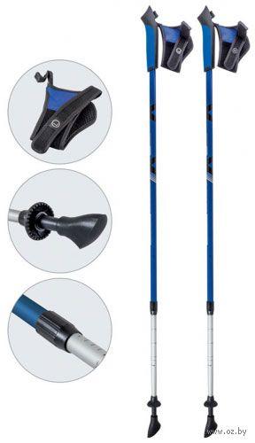 Палки для скандинавской ходьбы двухсекционные AQD-B017 (85-135 см; синие) — фото, картинка