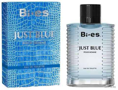 "Туалетная вода для мужчин ""Just Blue"" (100 мл) — фото, картинка"