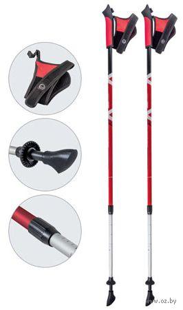 Палки для скандинавской ходьбы двухсекционные AQD-B017 (85-135 см; красные) — фото, картинка