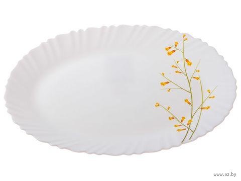 """Блюдо стеклокерамическое """"Лимонник"""" (320 мм) — фото, картинка"""