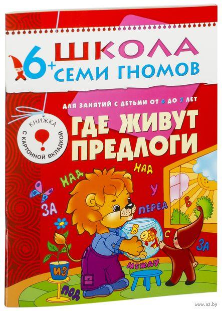 Где живут предлоги. Для занятий с детьми от 6 до 7 лет. Дарья Денисова