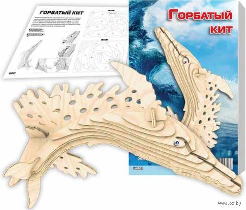 """Сборная деревянная модель """"Горбатый кит"""" — фото, картинка"""