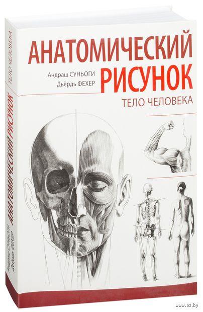 Анатомический рисунок. Тело человека. Андраш Суньоги