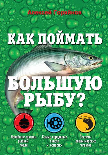 Как поймать большую рыбу?. Алексей Горяйнов
