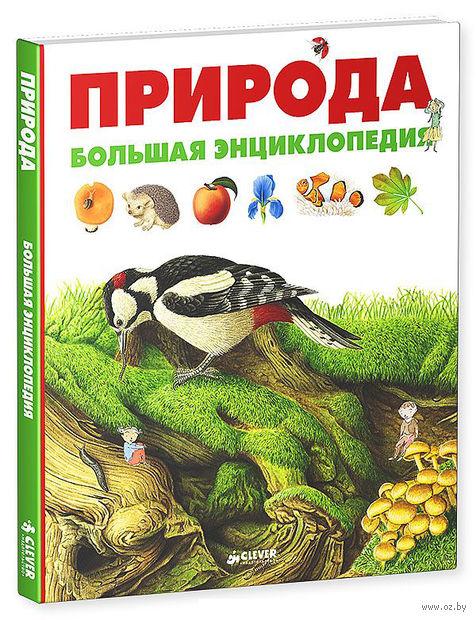 Природа. Большая энциклопедия. Дельфин Гравье-Бадреддин