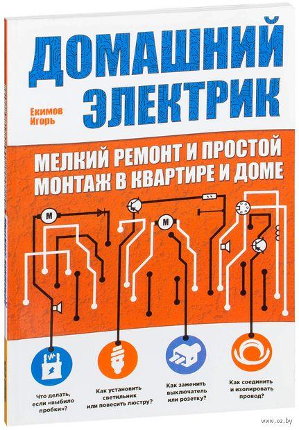 Домашний электрик (мелкий ремонт и простой монтаж в квартире и доме). Игорь Екимов