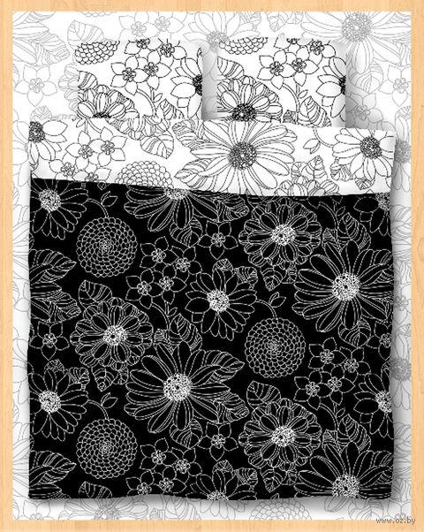 """Постельное белье """"Black and White"""" (двуспальное) — фото, картинка"""