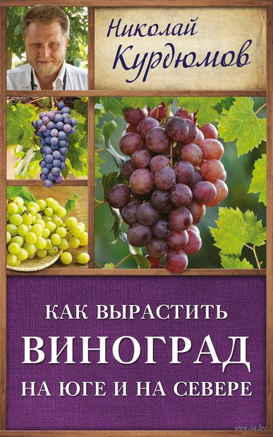 Как вырастить виноград на Юге и на Севере. Николай Курдюмов