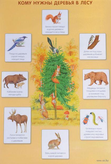 Кому нужны деревья в лесу. Плакат