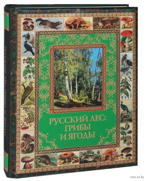 Русский лес. Грибы и ягоды — фото, картинка