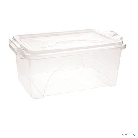 Ящик для хранения пластмассовый с крышкой (2,5 л; арт. 30051)