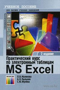 Практический курс по электронным таблицам MS Excel. Учебное пособие — фото, картинка
